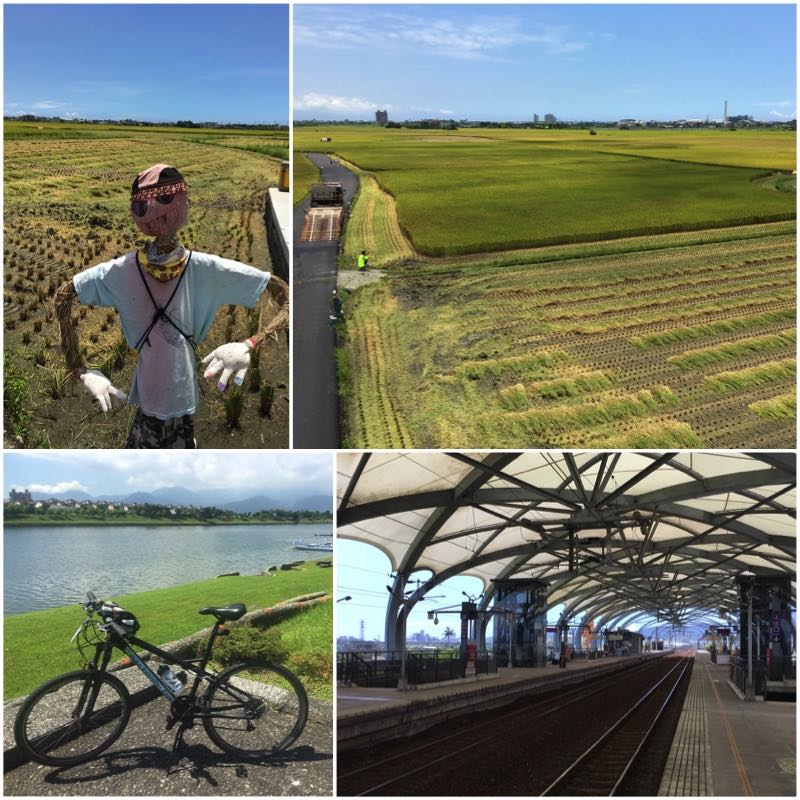 Scarecrow, rice paddy field, bicycle and train platform