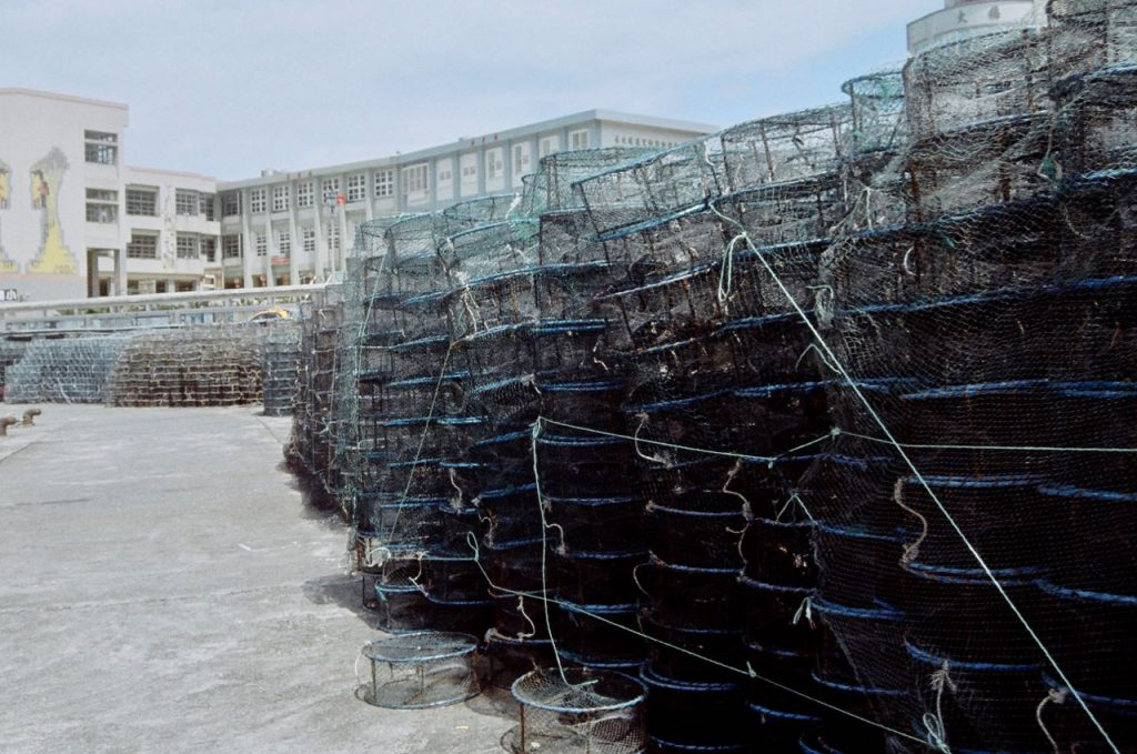 fish traps ashore