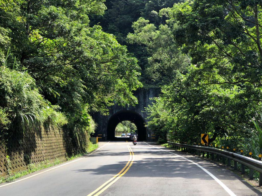 Road Tree Tunnel